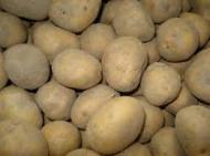 aardappelen 25kg